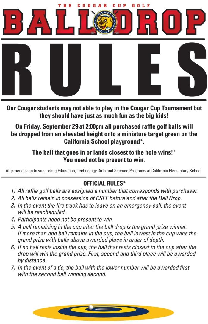 2016 Ball Drop Rules Sign-1.(v.20)jpg.jpg